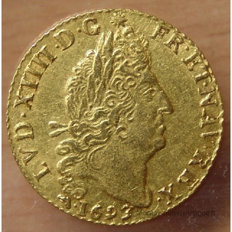 Louis XIV Louis d'or aux 4 L 1693 D Lyon