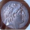 Syrie Tétradrachme Antiochus VIII Grypus 115/113 av JC Aké Ptolémais